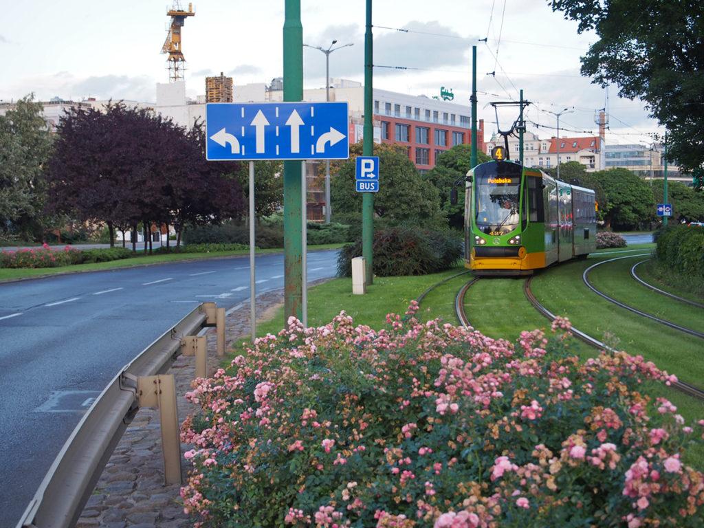 Eine schwarze Autofahrbahn aus Asphalt, daneben eine Straßenbahn deren Schienen in eine Rasenfläche eingefasst sind.